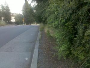Sidewalk on Redwood
