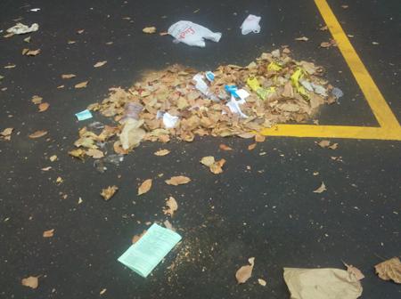 Trash at 1333 Harrison